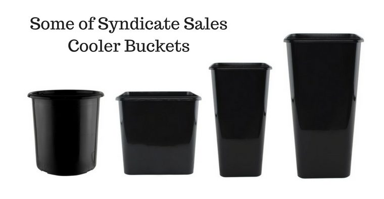 Blog Image-Some of Syndicate SalesCooler Buckets